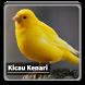 Kicau Suara Burung Kenari by kangdeveloperstudio