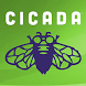 Cicada Magazine by Carus Publishing