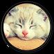 Kitten [HD] Wallpapers by CodeLoad