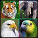 صدای پرندگان و حیوانات by websoft group