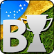 Tabela Campeonato Brasileiro B by PlanetaAndroid