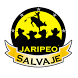 Jaripeo Salvaje by AppNotch