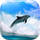Dolphin Live Wallpaper by Wallpapers and Backgrounds Live