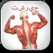 كمال الاجسام التشريح دليل by dierre09