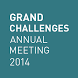 Grand Challenges 2014 Meeting by Web Spiders Group