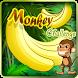 Monkey Challenge HD by Envi group