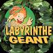 Labyrinthe géant by S.A.S. INTECMEDIA