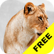 Baby Discover Animals FREE by Hatch Works Ltd