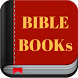 Holy Bible mp3 Offline by BELIEFS