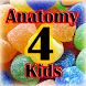Anatomy4Kids human anatomy