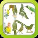 Masteran Kicau Burung by Afnan Dev