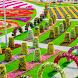 Цветы для by MobileDevComunity