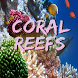 Coral Reefs by Didmo AB