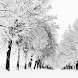 winter season wallpaper by motion interactive