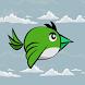 Bird Run by IdanGames