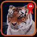 Young Tiger 3D Live Wallpaper