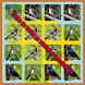 canto de todos os pássaros brasileiros by Berindel_App