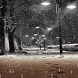 Rainy Night LWP by Daksh Apps