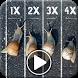 Slow Motion Video Camera by VideoVibe