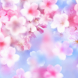 Japanesecherry tree Wallpapers by fryttyteam