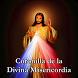 Coronilla Divina Misericordia by LunaSoft