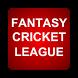 Fantasy Cricket League Tips by Veintidos Apps
