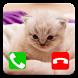 Talking Cat Call Prank by Godaprank Dev