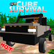 Cube Survival Online by Acagames