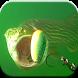Underwater Fishing Videos by Amazin Apps