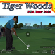 Guide For Tiger Woods PGA 2004 by putra8