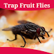 How To Get Rid Of Fruit Flies by The Almighty Dollar