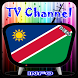 Info TV Channel Namibia HD by TV Television Channel List Sat info
