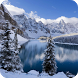 Winter Live Wallpaper HD by Bumble_Bi