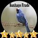 Canto de Sanhaço Frade by jonn jeff
