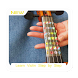 Learn Violin Step by Step by Tapis Dev