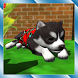 Cute Pocket Puppy 3D by Pocket Games Entertainment