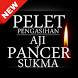 Pelet Aji Pancer Sukma by Assyifa Apps