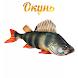 Окунь by fishermanyou