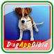 Dog AppOlbia