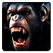 Caesar The Monkey King