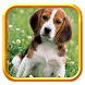 42 Породы собак by MegaBooks