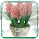 Hyacinth Jigsaw Puzzles by Identity Theft