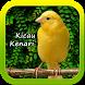 Kicau Kenari Masteran by ard app