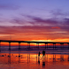 Newport Beach Homes by Coldwell Banker HomeStack