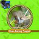 Master Kicau Burung Prenjak by AdeliaSound