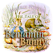 Benjamin Bunny Audio Book by Nice Biscuit
