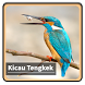 Kicau Suara Burung Tengkek by kangdeveloperstudio