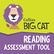 Big Cat Reading Assessment 1.3 by HarperCollins Publishers Ltd