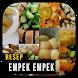 Resep Empek Empek Istimewa by Resep Indo45