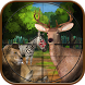 Jungle Hunting 3d Shooter by Tapsformer, Inc.